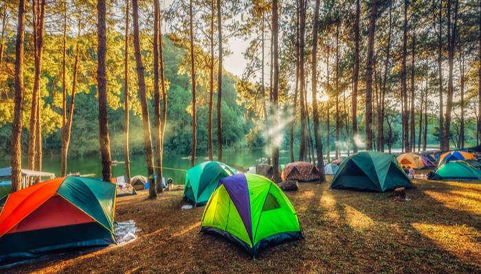 camping sight