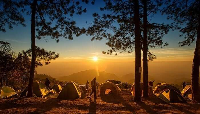 Camping in alibaug