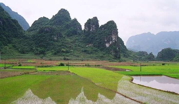 mountain hiking in Vietnam