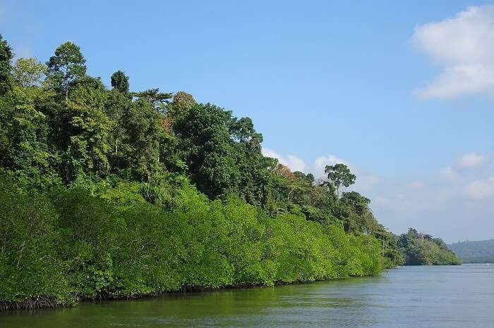 Tours in Andaman