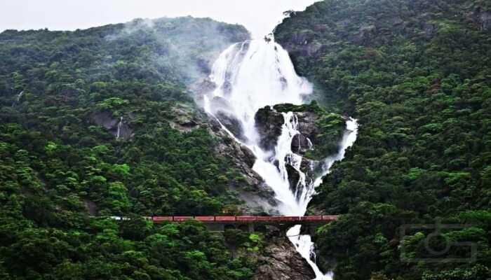 Dudhsagar Waterfalls Trek Offbeat Goa