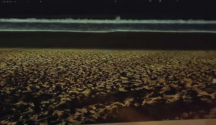 beach view at night