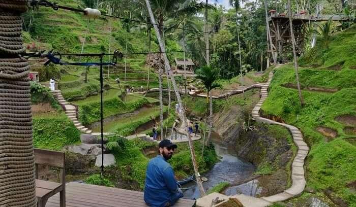 an amazing view of ubud village