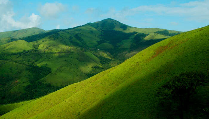 A Green Hill in the Western Ghats