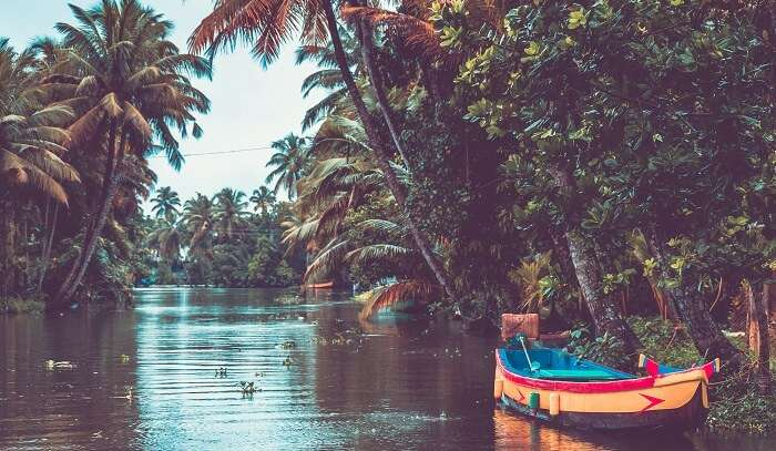 Kerala Best Time To Visit