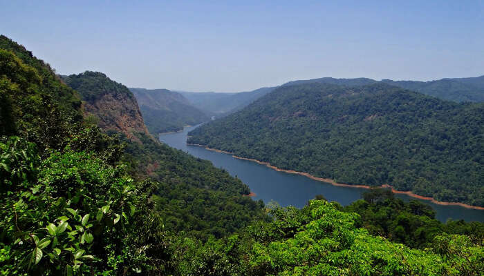 The Green Western Ghats