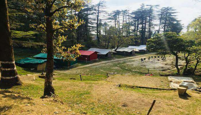 Northern Adventure Camp & Cottages