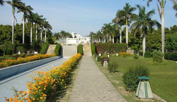 Pinjore Gardens in Himachal