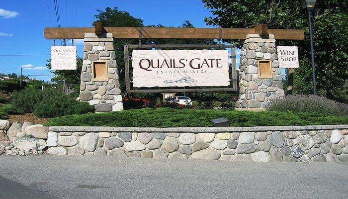 Quails' Gate Winery: Take A Tour Tasting Delectable Wine!