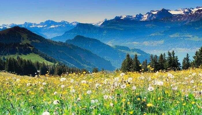 Switzerland Valley View