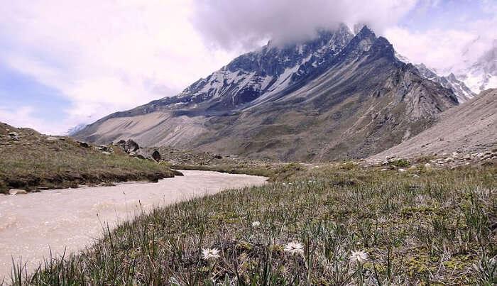 Tapovan View