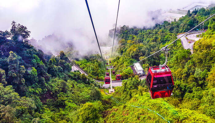 Best Things to do in Genting