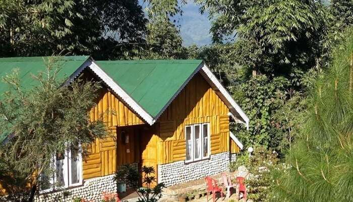 cottage in forest
