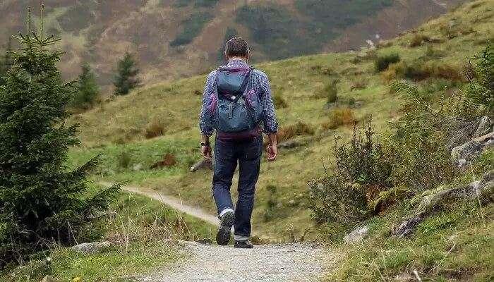 Bailey's  Walk: Go Hiking!