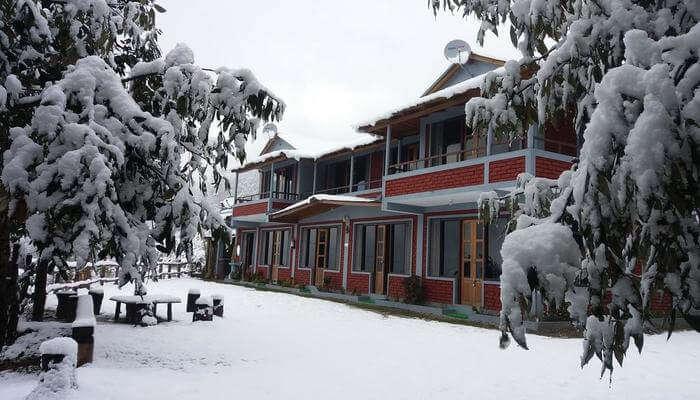 Binsar Oak Paradise