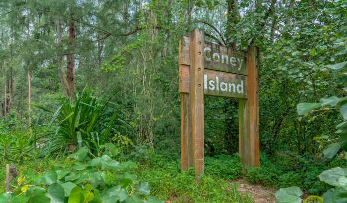 Cooney Island Park
