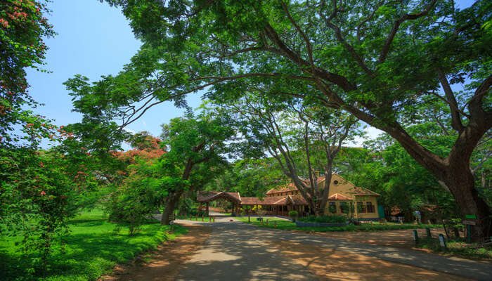 Famous Cottages In Kabini