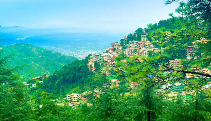Awesome Dharamshala in summer