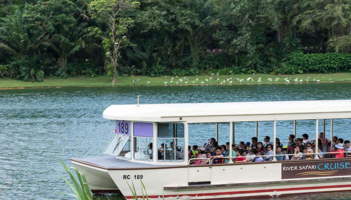 Cruise In The Singapore River Safari