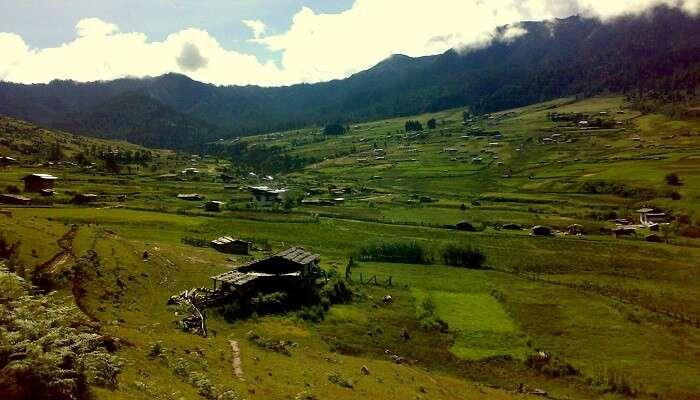 Gangtey Trek In Bhutan
