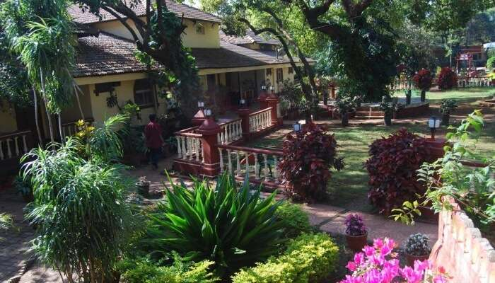 Lovely architecture resort, Mahabaleshwar