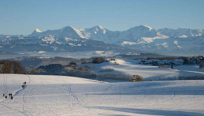 Gurten Mountain - Go For Hiking And Tobogganing
