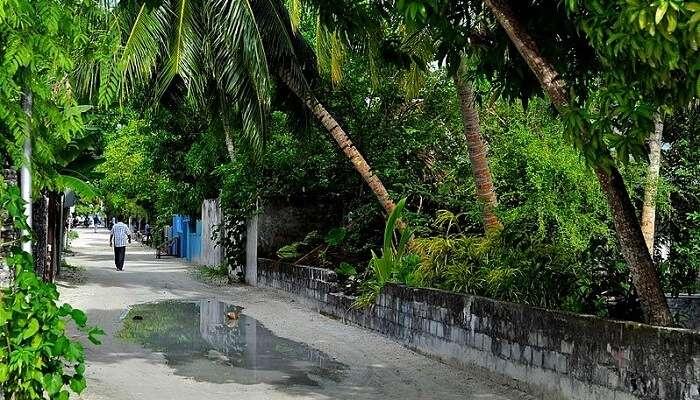 Hithadhoo Island