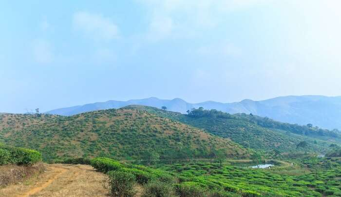 the most nature-rich hills stations