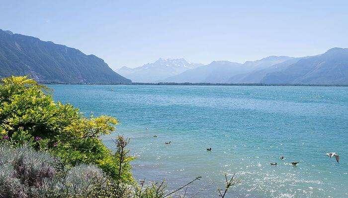 Lake Hopping