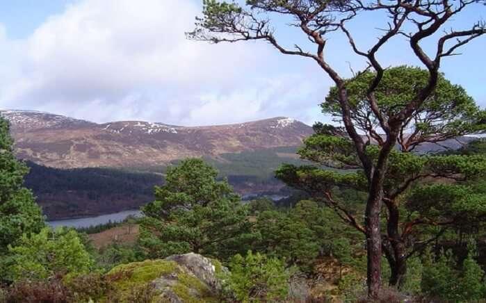 rugged hills