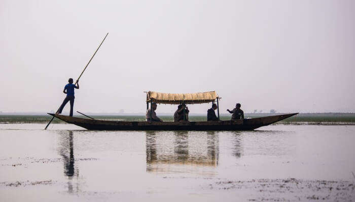 Chilika Lake and is home to plenty of native and migratory birds