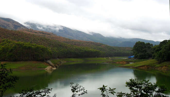 Mattupetty Dam View