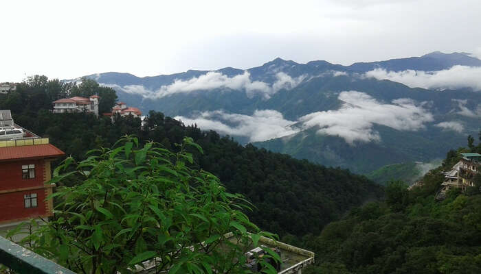 Clouds End Viewpoint Mussoorie