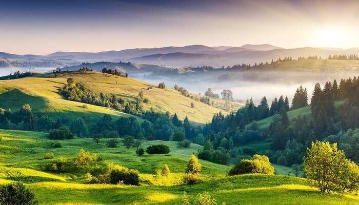 Natural Landscape View