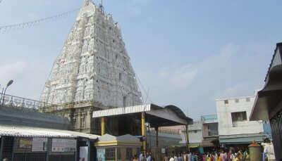 Padmavathi-Ammavarthi1