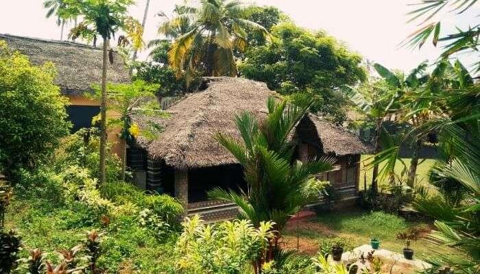 Palm Tree Bungalow Resort in Varkala