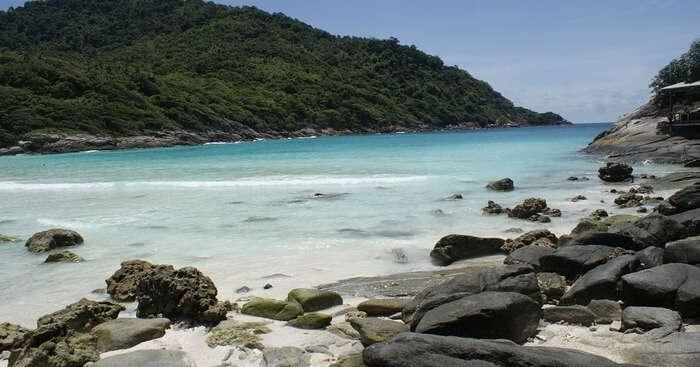 Phi Phi Islands And Racha Islands