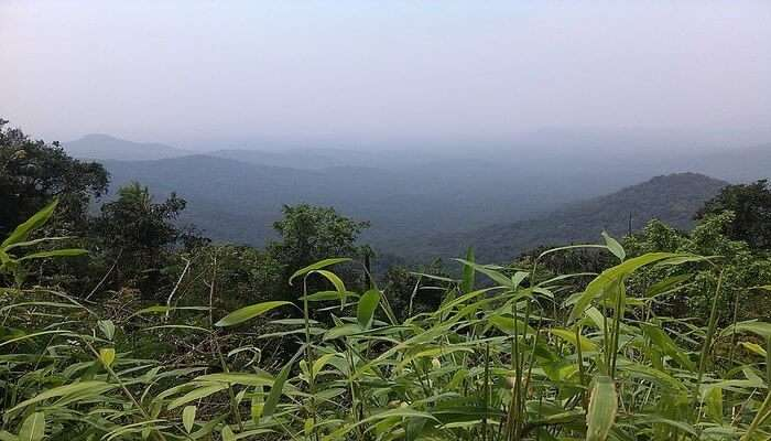 Picturesque Road Trip To The Chorla Ghats