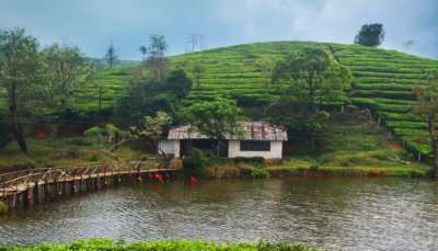 Amazing Places Near Vagamon