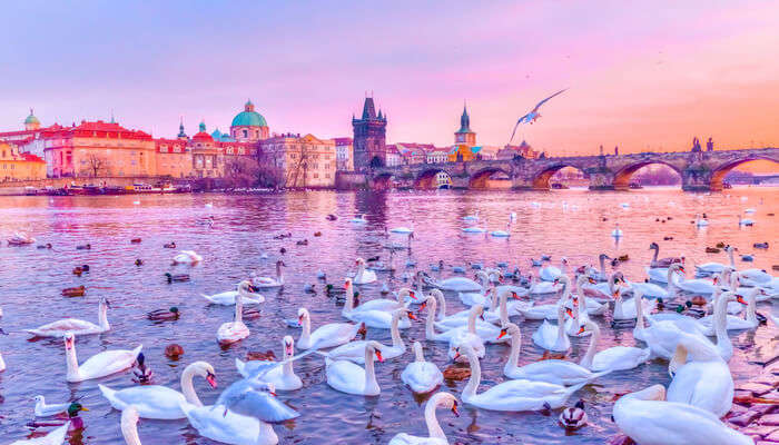 Beautiful scene in prague