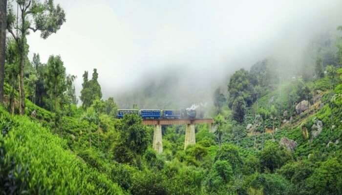Places To Visit Near Bandipur