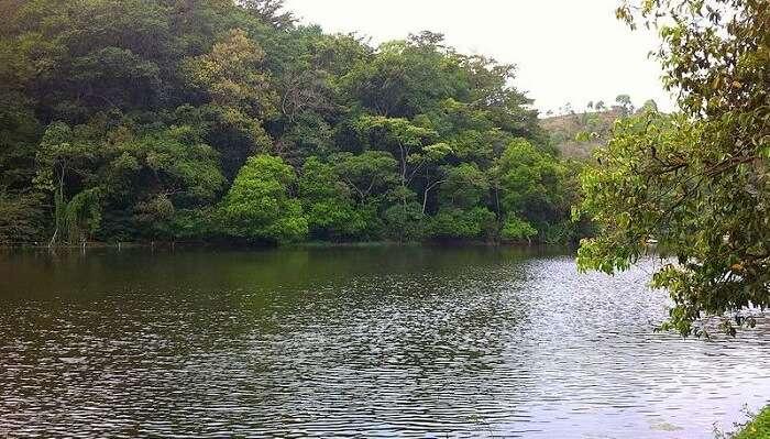 Pookot Lake in vythiri