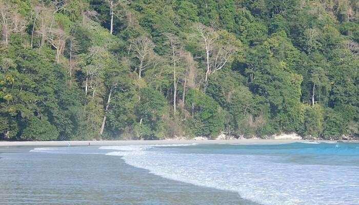 Beachside view at Andaman