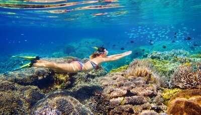 Snorkeling In Bangkok