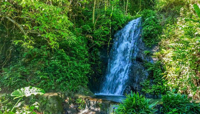 Tai Mo Shan Waterfalls