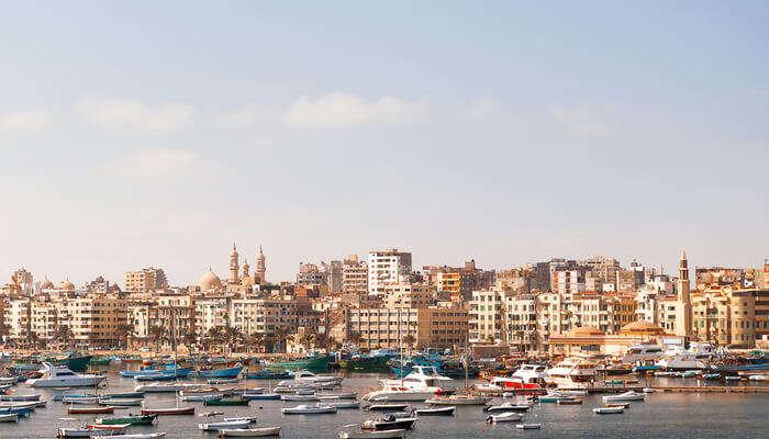 Take An Independent Tour Of Alexandria