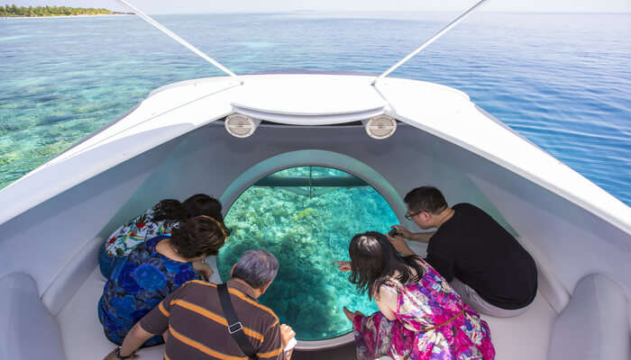 View The Coral Reef Through A Glass Bottomed Boat