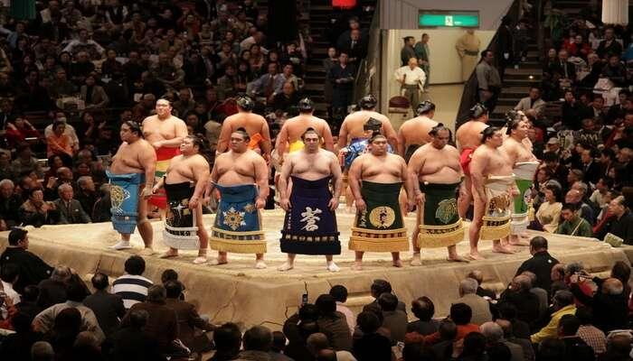 Witness Sumo Wrestling