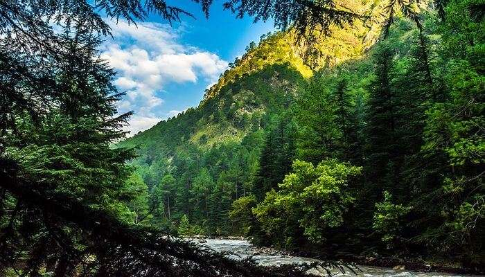 Best Hill stations near Chail
