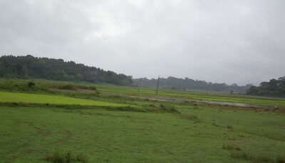 Hill Stations Near Coorg